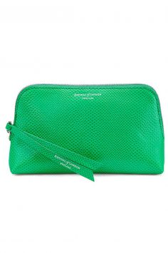 Aspinal pouch