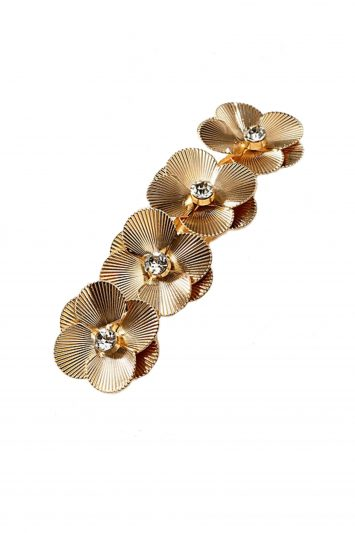 Click to Buy Anthropologie Clip