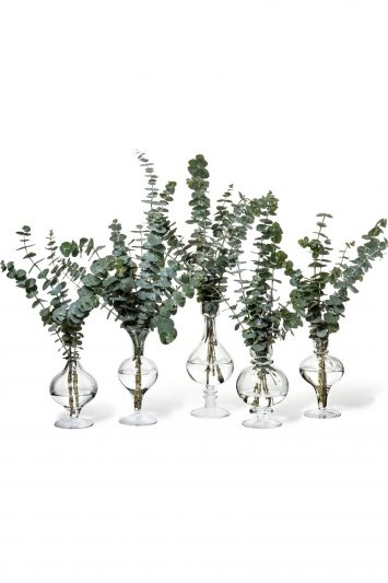 Click to Buy Bailey Bud Vase Collection