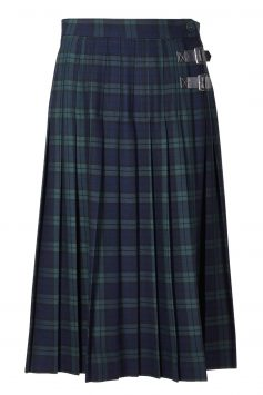 Click to Buy Marks & Spencer Skirt