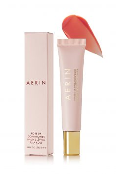 Click to Buy Aerin-rose-lip