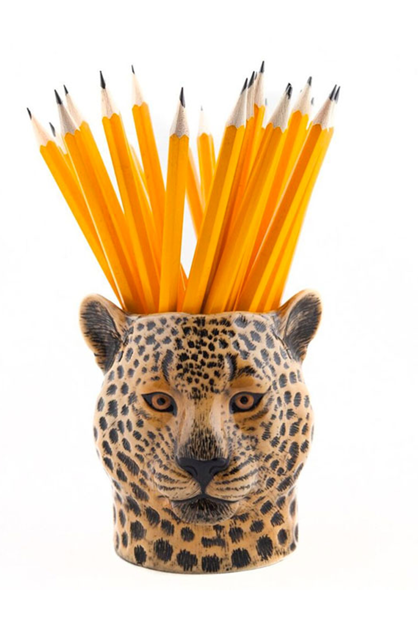 Leopard-Pen-Pot